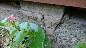 北区の災害調査は03-5985-2323まで!東京都北区で地震保険申請