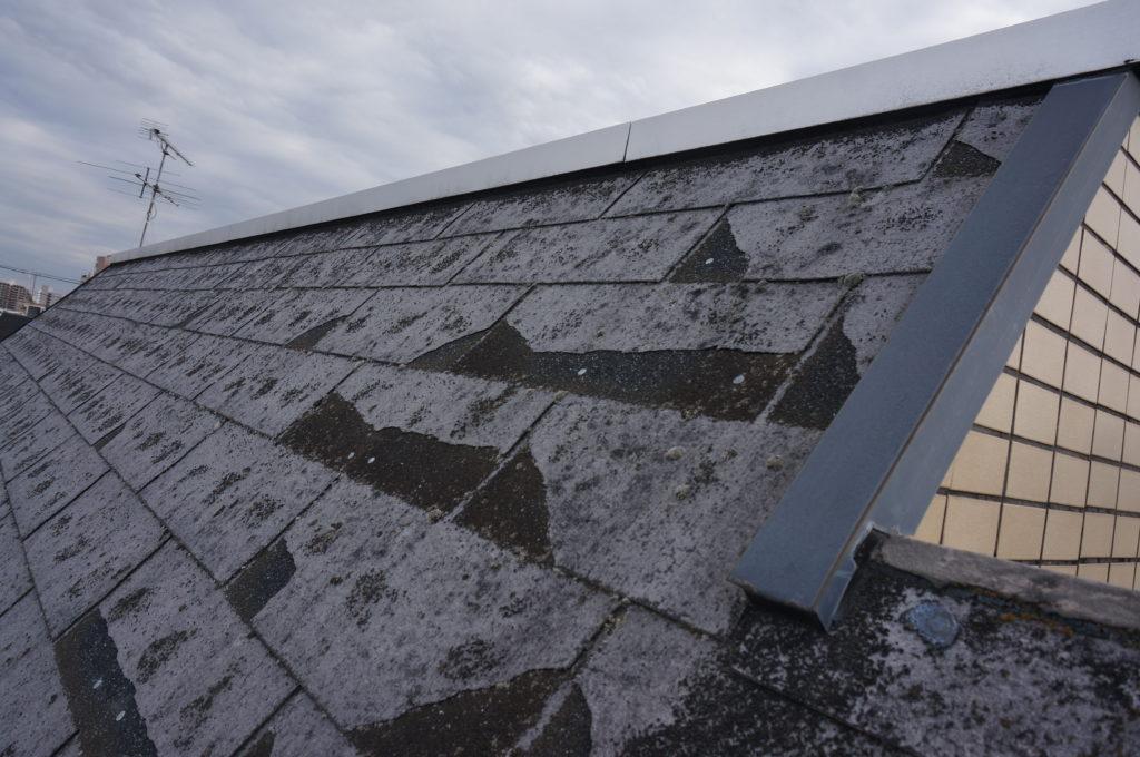 中野区で火災保険活用の屋根重ね葺き工事