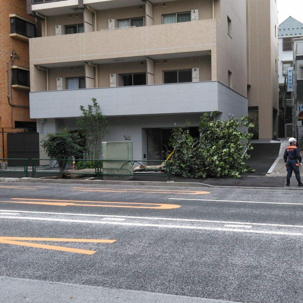 台風15号ファクサイ直撃!東村山市で屋根修理!