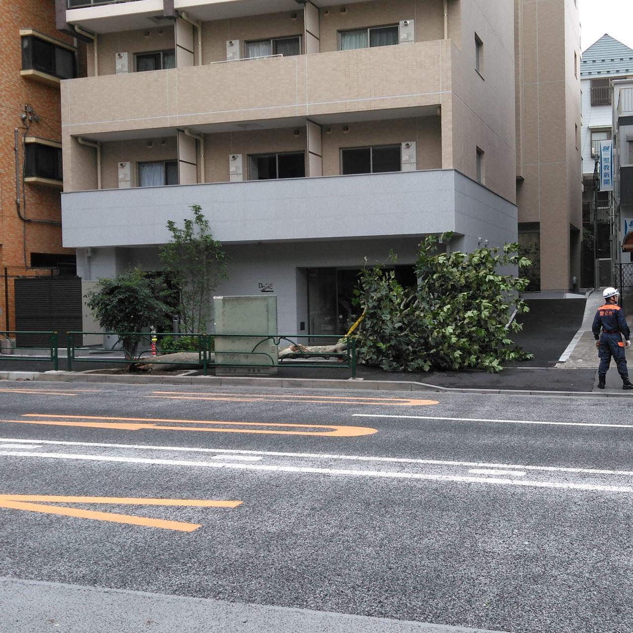 台風15号ファクサイ直撃!東村山市で屋根修理!台風被害は火災保険で原状回復