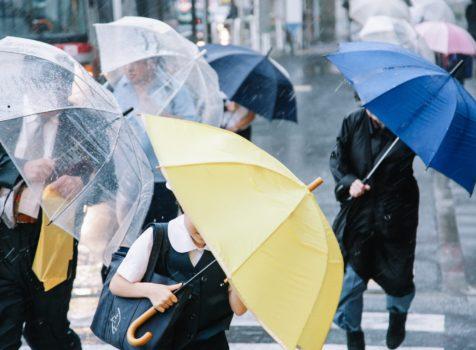 千葉県我孫子市で台風19号により波板破損!!保険申請できれいに修復★