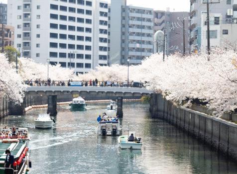【施工完了報告!】台風&大雪による被害を修繕!埼玉県所沢市にて施工完了!